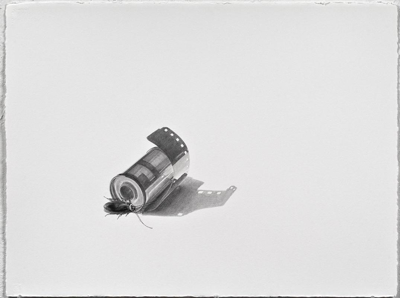 18cockroach-film